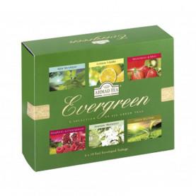 Coffrets thé vert - Evergreen - carton de 8