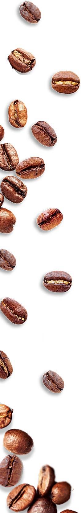 Grains café gauche